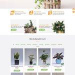 Mẫu website bán cây cảnh, cây phong thủy đẹp mắt, sang trọng